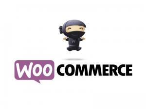 webshop maken met woo commerce oudenaarde